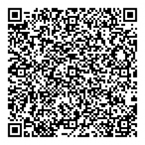 static qr code without logo 2