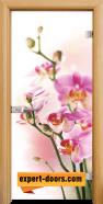 Стъклена интериорна врата Print G 13-2, каса Светъл дъб