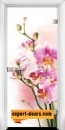 Стъклена интериорна врата Print G 13-2, каса Бяла