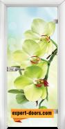Стъклена интериорна врата Print G 13-3, каса Бяла