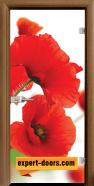 Стъклена интериорна врата Print G 13-8, каса Златен дъб