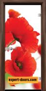 Стъклена интериорна врата Print G 13-8, каса Орех