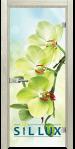 Стъклена интериорна врата Print G 13 3 Green I